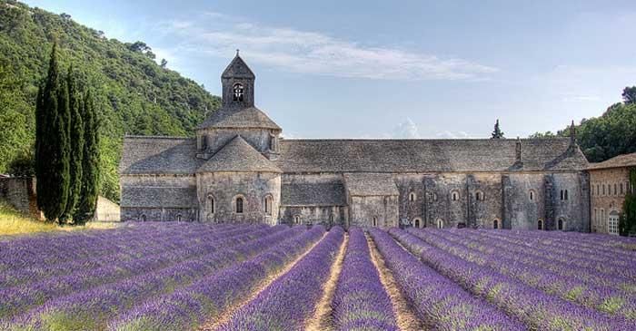 Abbey de Senanque, Provence.
