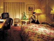 Gatwick Mercure hotel